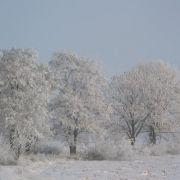 zima20091